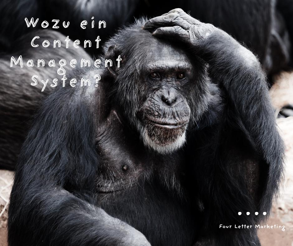 Wozu ein Content Management System?